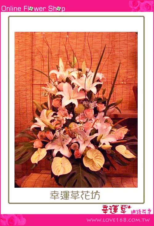 C22優質盆花