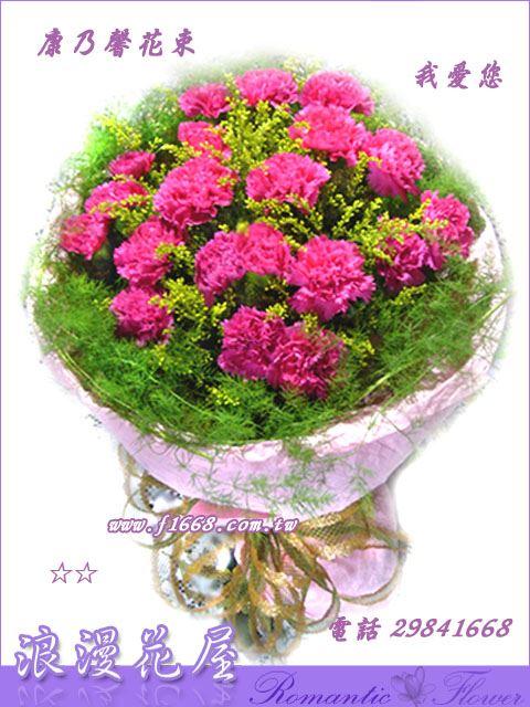 5-11康乃馨花束