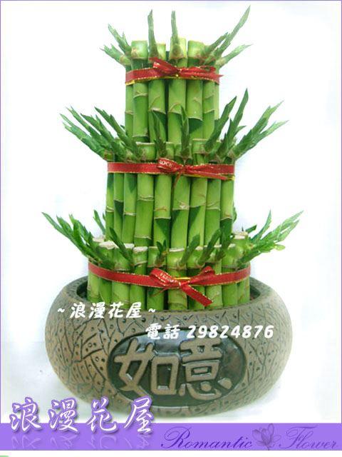B08如意開運竹盆栽