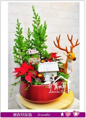 聖誕設計ab120601