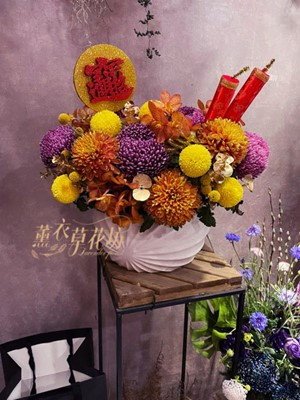 富貴牡丹菊~盆花設計 110012738