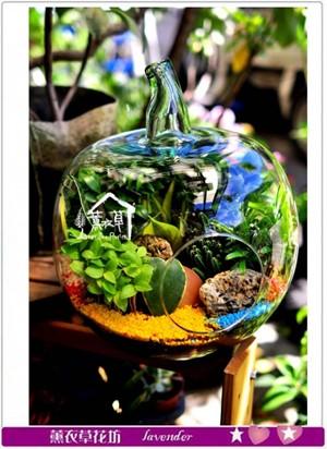 玻璃花器設計~蘋果造型c082906-到貨羅
