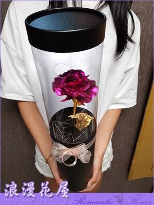 黃金桃紅玫瑰 A222