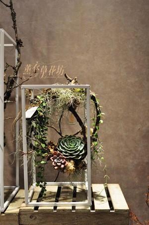 燈飾&多肉植物&鐵藝設計盆栽108111613
