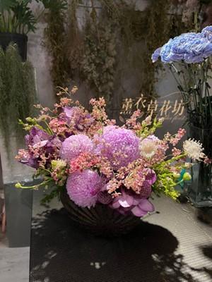 富貴牡丹菊~盆花設計 110020630
