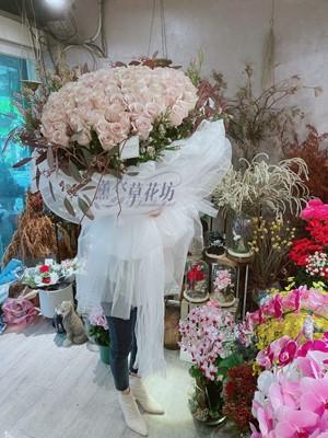 99朵流沙粉玫瑰~進口玫瑰109122308