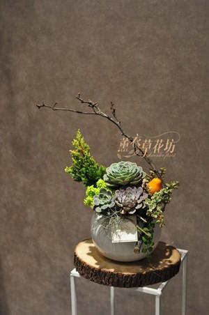 多肉植物設計108112612
