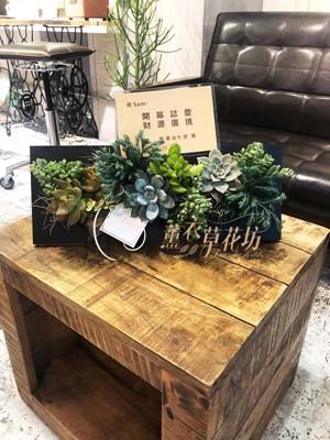 多肉植物設計~歐飾款b111120