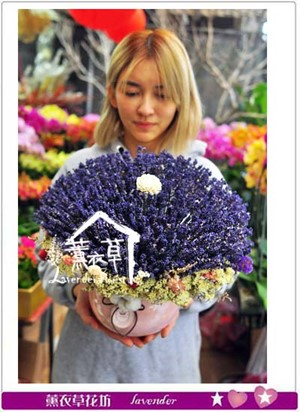 薰衣草~盆花設計107012802