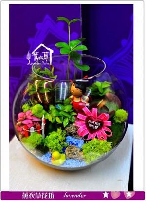玻璃缸設計A030429