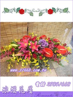 會議盆花 F17