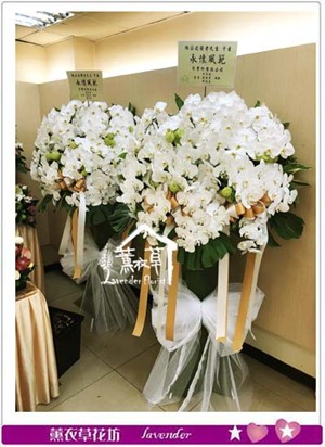 蝴蝶蘭花柱一對a093001