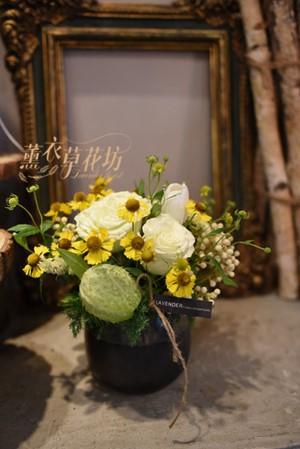 小品~盆花設計 110101605