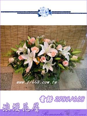 盆花F20
