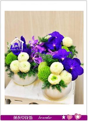 桌上小盆花B061410