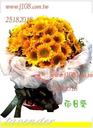 向日葵花束66朵G560
