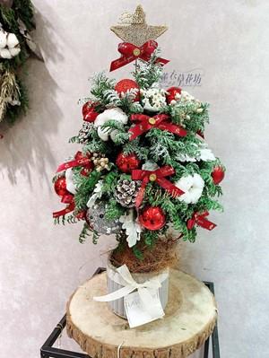 聖誕樹/聖誕節/開幕送禮 /盆栽/盆景 107112203