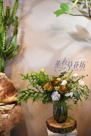 盆花設計110101602