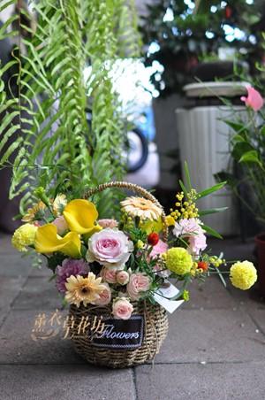 提籃盆花設計109110602