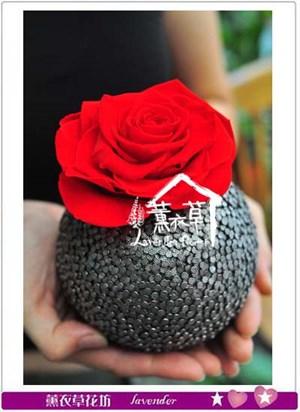 玫瑰不凋花 106081201