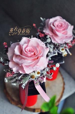 日本空運~玫瑰不凋花/永生花/恆星花一個/108042803
